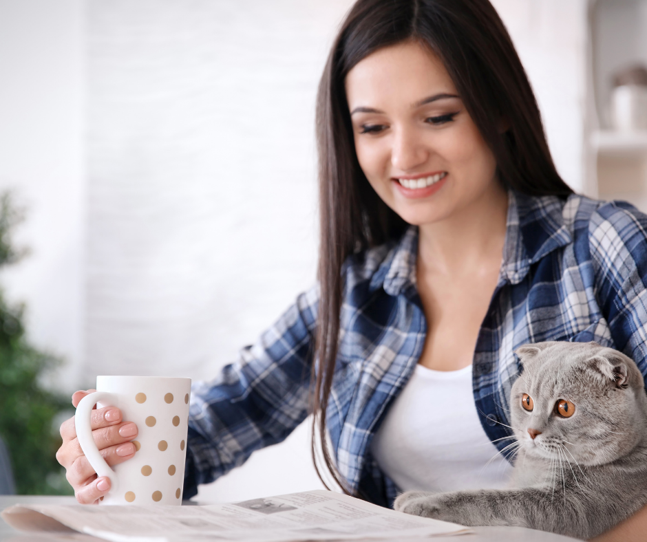 Tierkommunikation Online lernen gemeinsam wachsen